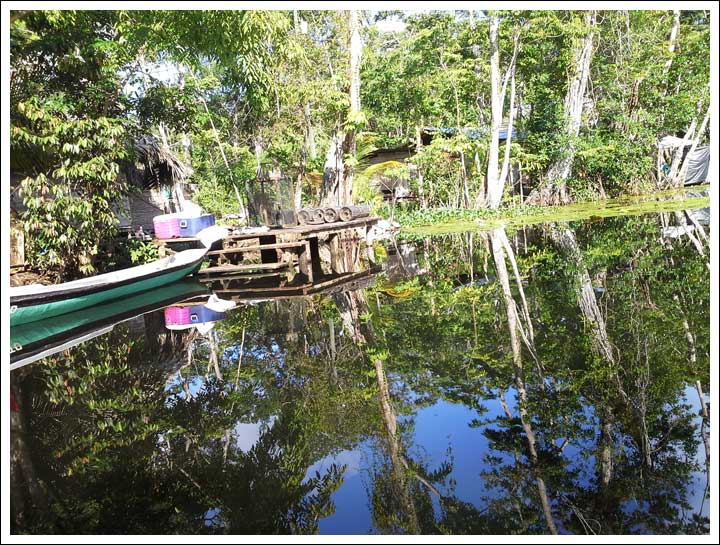 Living On the Water in the Mangroves, No Land
