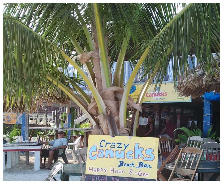 Old Favorite Bar on Ambergris Caye