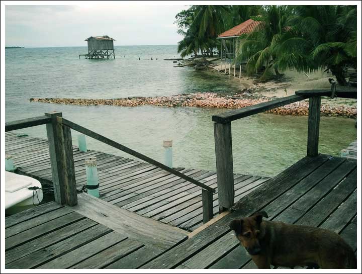 Turnaround Point: Tobacco Caye Local Restaurant Building Piles of Conch