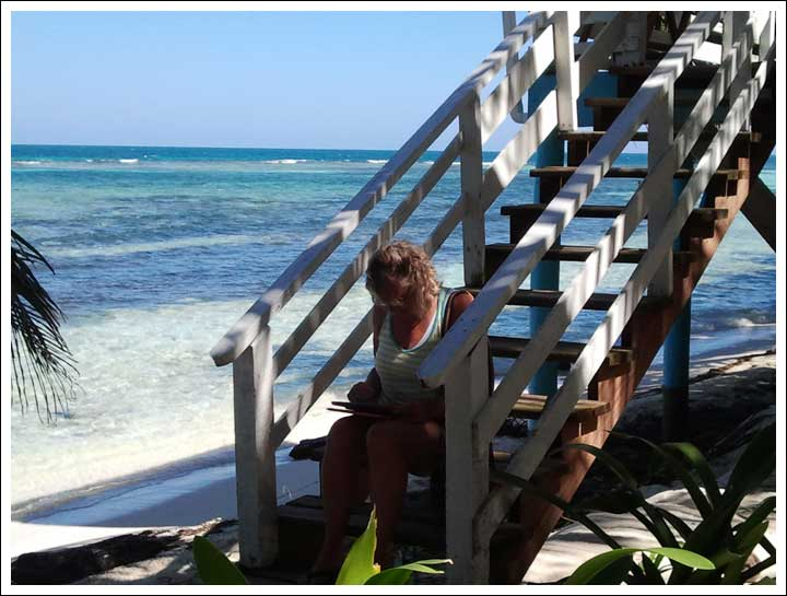 Deb Tracking Down Wifi Off A Ranguana Cabana