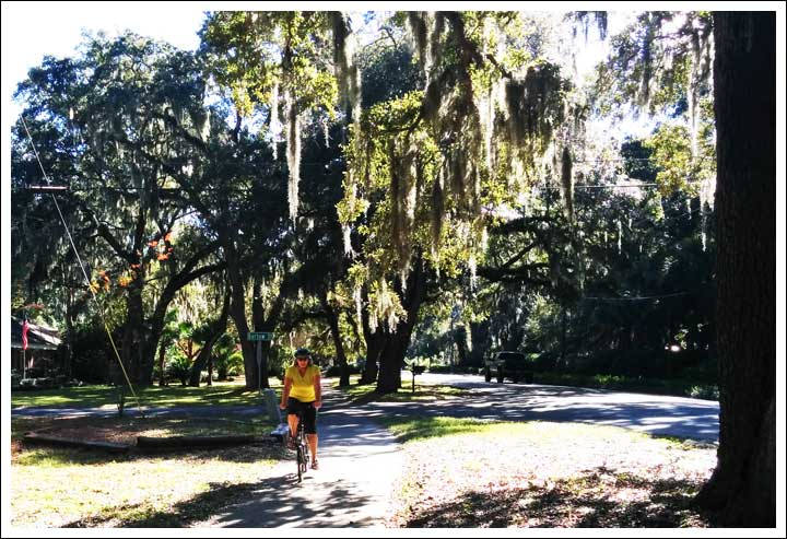 Biking Under Spanish Moss