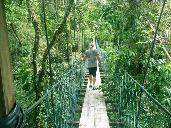 Swing Bridge at Hacienda Tijax