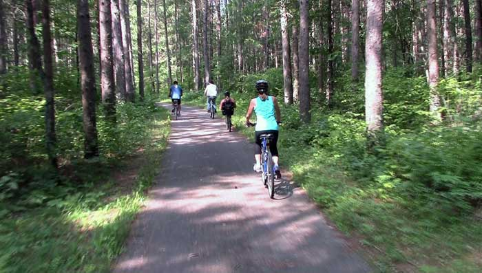 Chippeway National Forest Trails