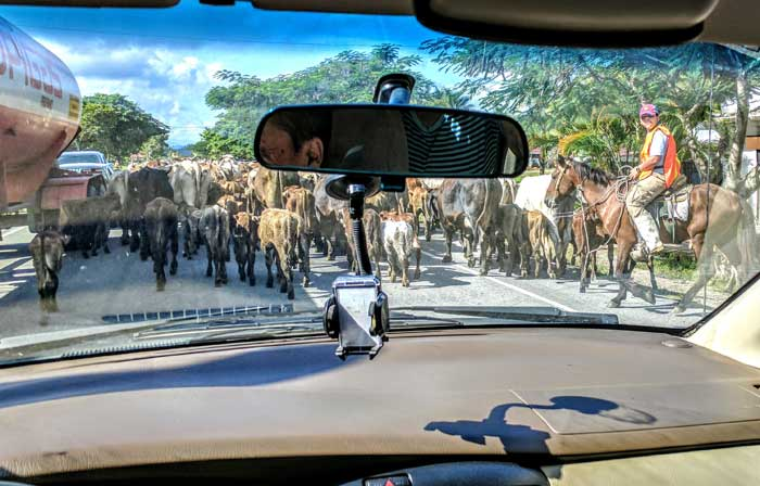 Killer Traffic Jams in Honduras