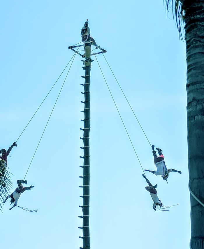 Male Pole Dancers on the Malecon